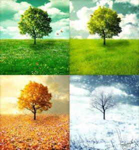 0b338c0bbad2f45914316150b5747fb4--four-seasons-art-the-four-seasons-vivaldi